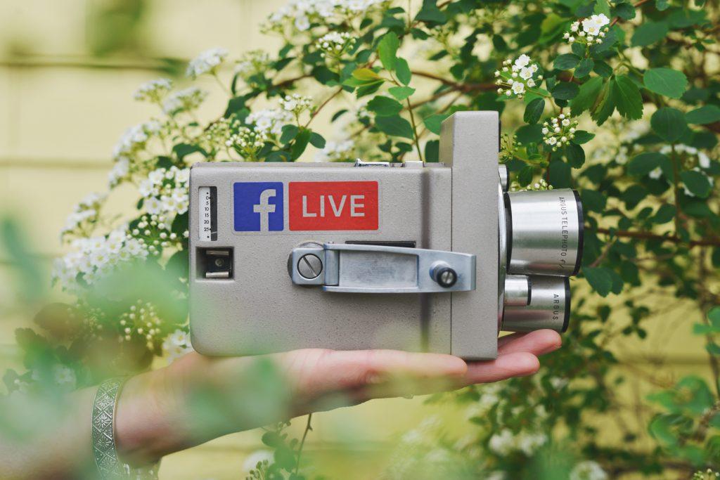 videos en vivo